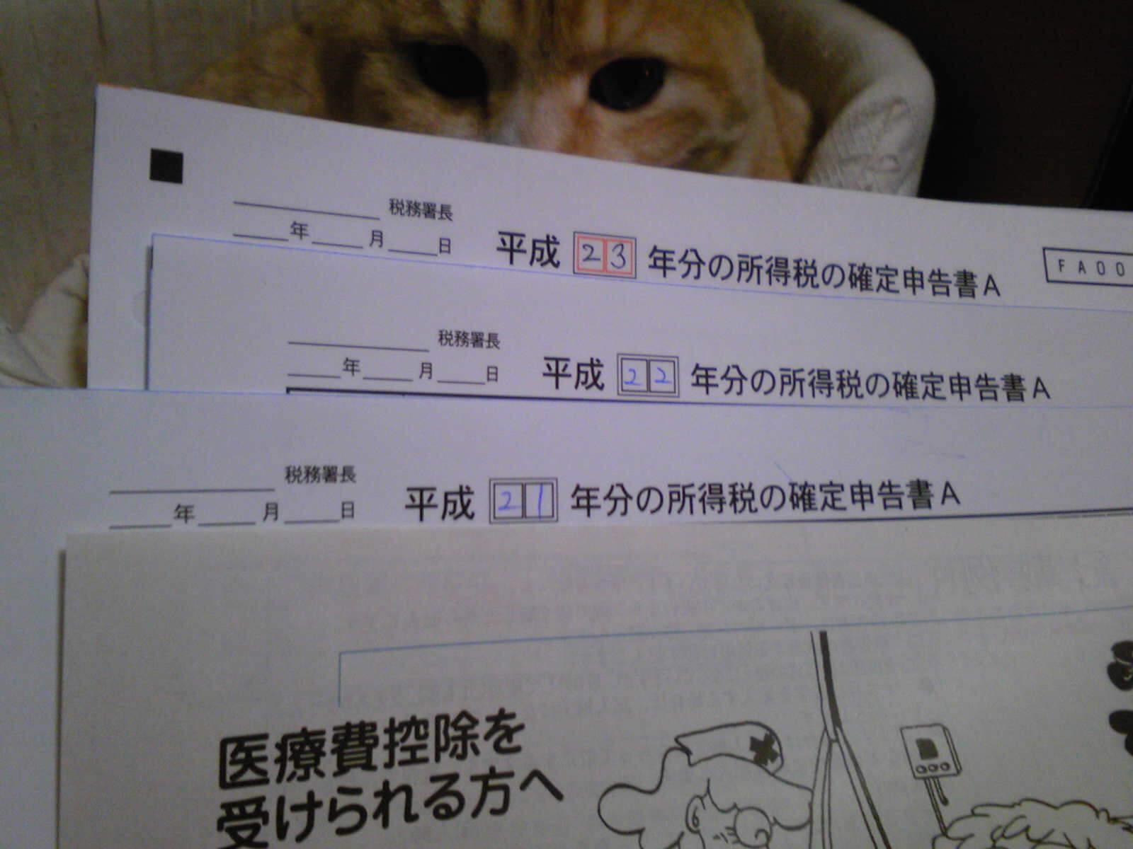 医療費控除とネコ…